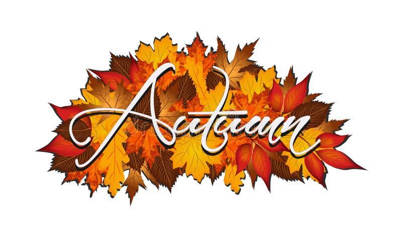 在秋季叶子报道的词秋天 库存图片