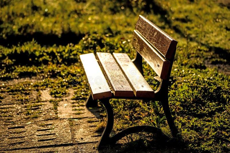 在秋季太阳的公园长椅 图库摄影