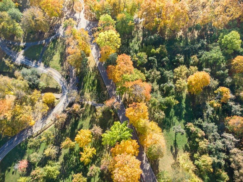 在秋季期间的美好的公园场面 与明亮黄色的树,桔子,红色叶子 免版税图库摄影