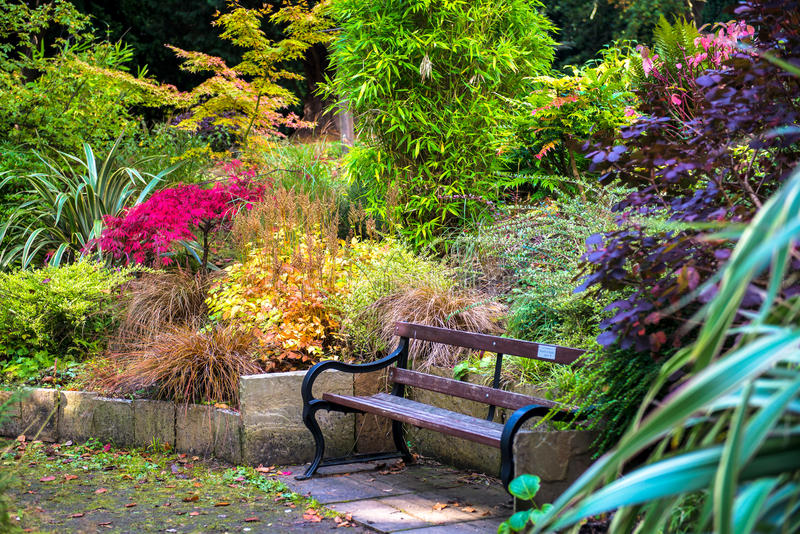 在秋季期间的五颜六色的美丽的英国庭院 图库摄影