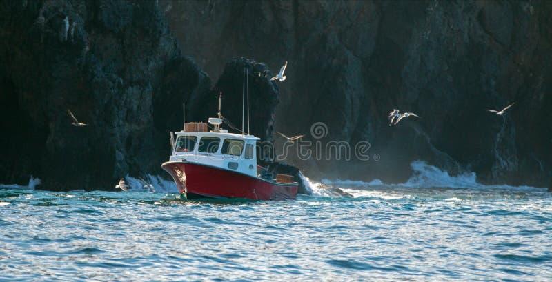 在科切岛点的东部样式龙虾小船下在离圣克鲁斯岛的附近海岸在海峡群岛在离加利福尼亚海岸美国的附近 免版税库存照片