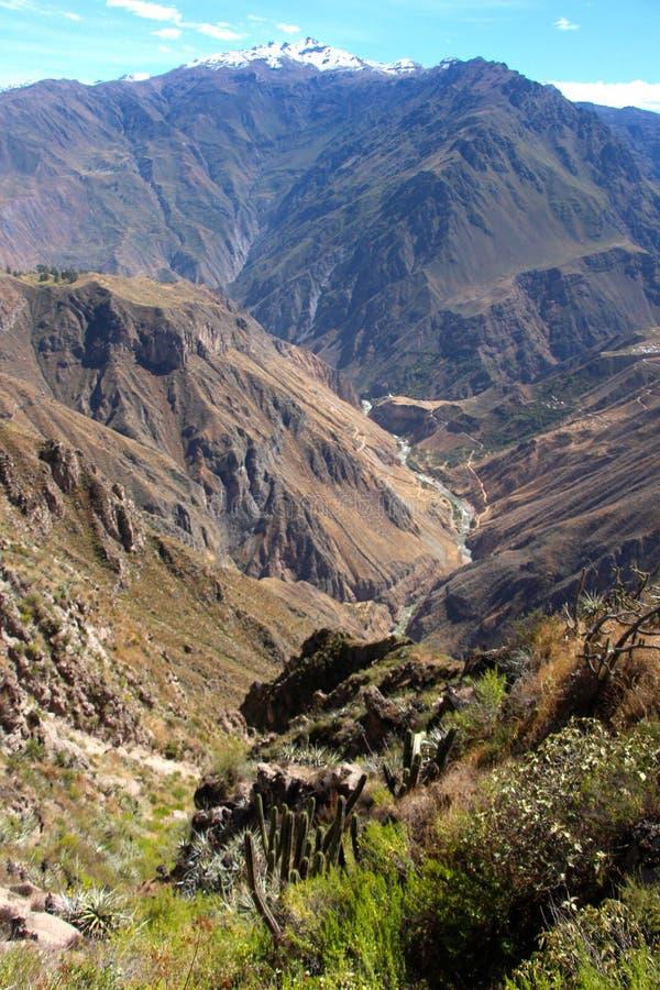 在科尔卡峡谷的惊人的看法 库存照片