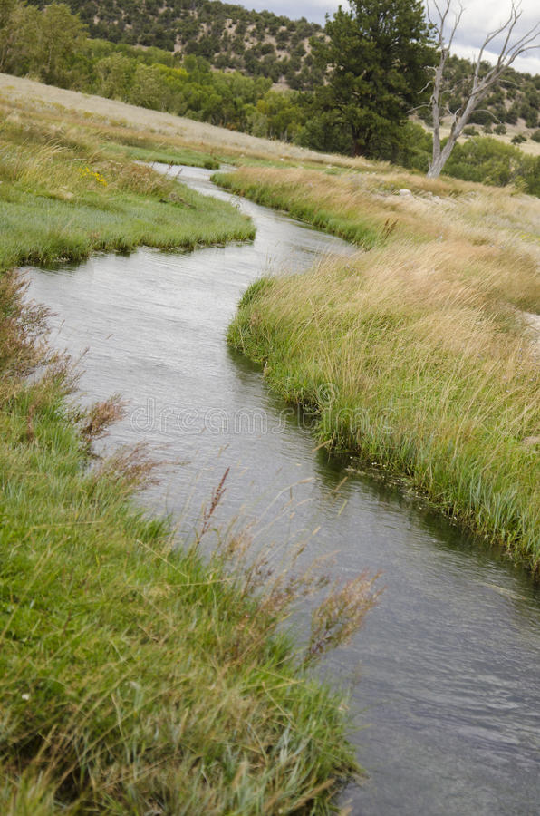 在科罗拉多领域的绕小河 库存照片
