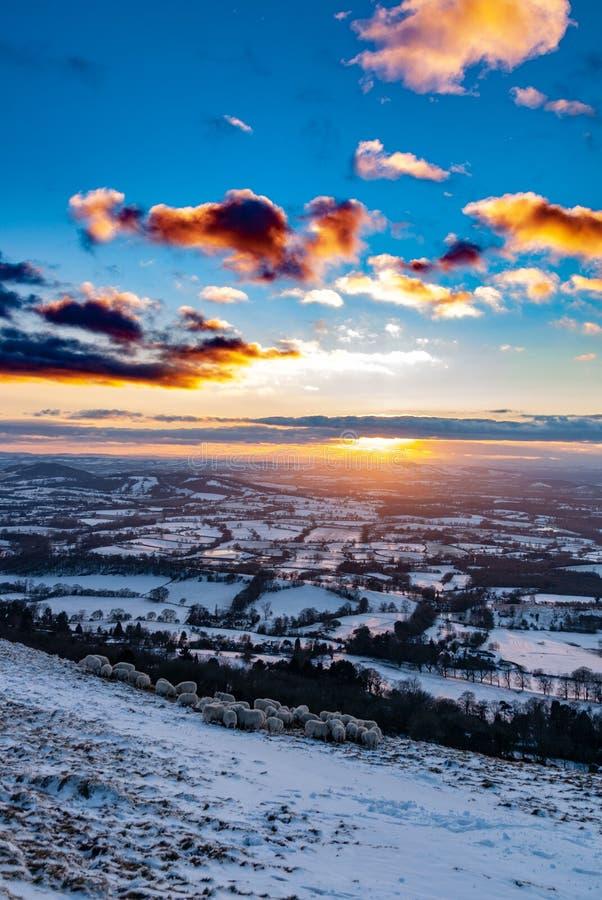 在科茨沃尔德,英国的冬天多雪的日落 免版税库存图片