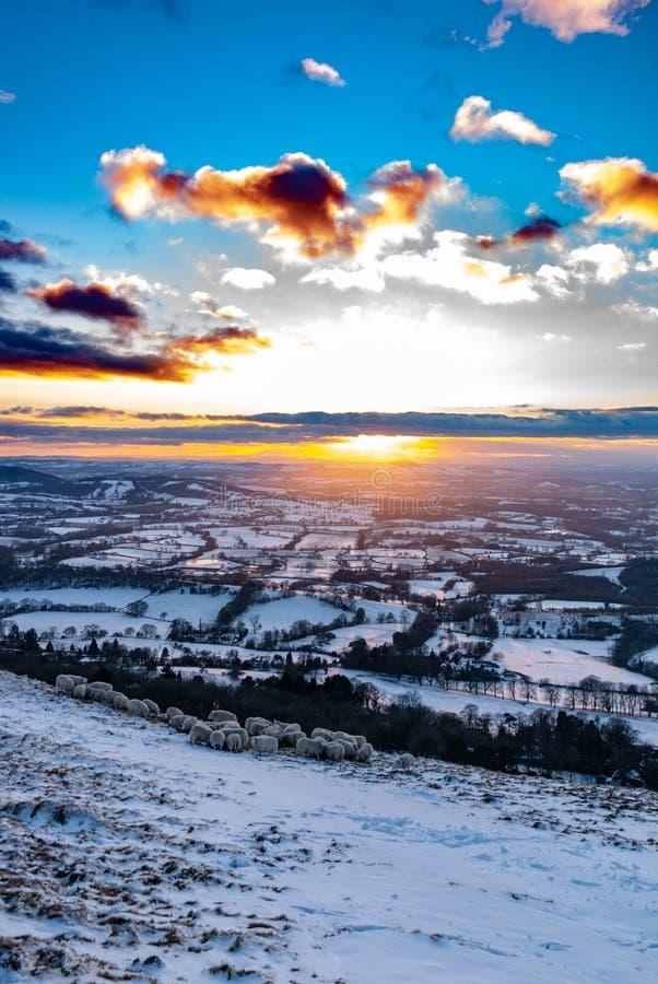 在科茨沃尔德,英国的冬天多雪的日落 库存图片