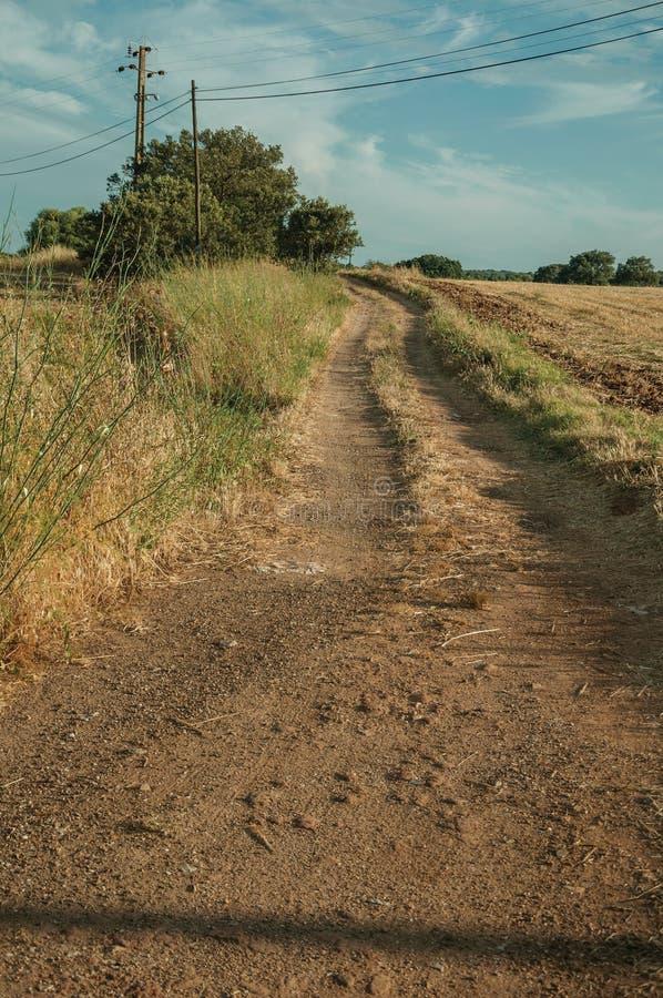 在秸杆报道的领域的土路 免版税库存照片