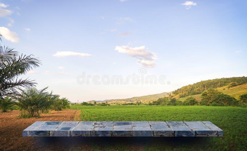 在稻田的石岩石架子 免版税库存照片