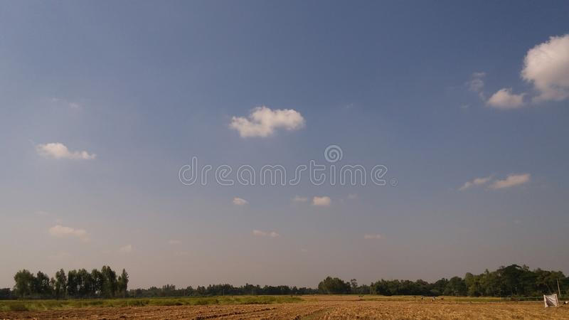 在稻的天空 免版税库存照片