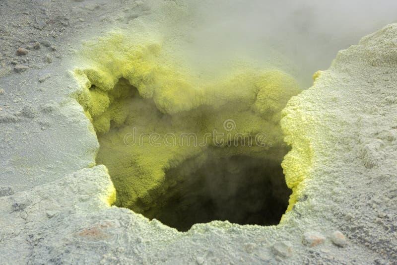 在穆特洛夫斯基火山火山火山口的喷气孔活动  免版税库存照片