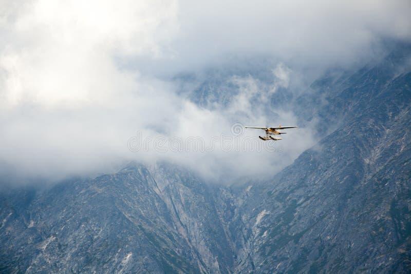 在空气的浮游物飞机 图库摄影