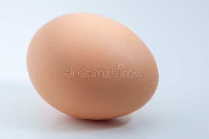 在空白的背景隔绝的鸡蛋 免版税库存照片
