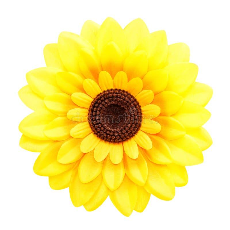 在空白背景的人为向日葵 库存图片