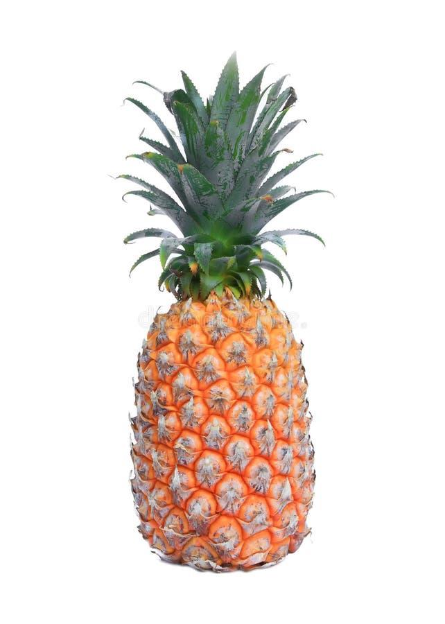 在空白背景的成熟菠萝 库存照片