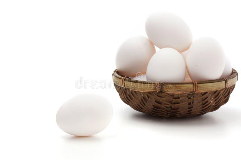 在空白背景的白鸡蛋 库存图片