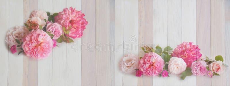 在空白背景的美丽的花花束 免版税库存图片