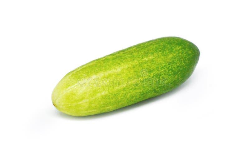 在空白背景的黄瓜 免版税库存图片