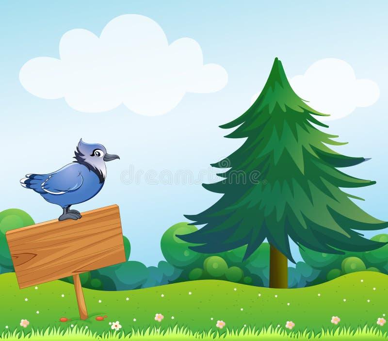 在空的木标志上的一只鸟 库存例证