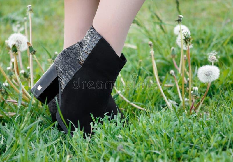 在穿在高跟鞋的长袜的妇女腿绒面革起动在绿草 免版税库存图片