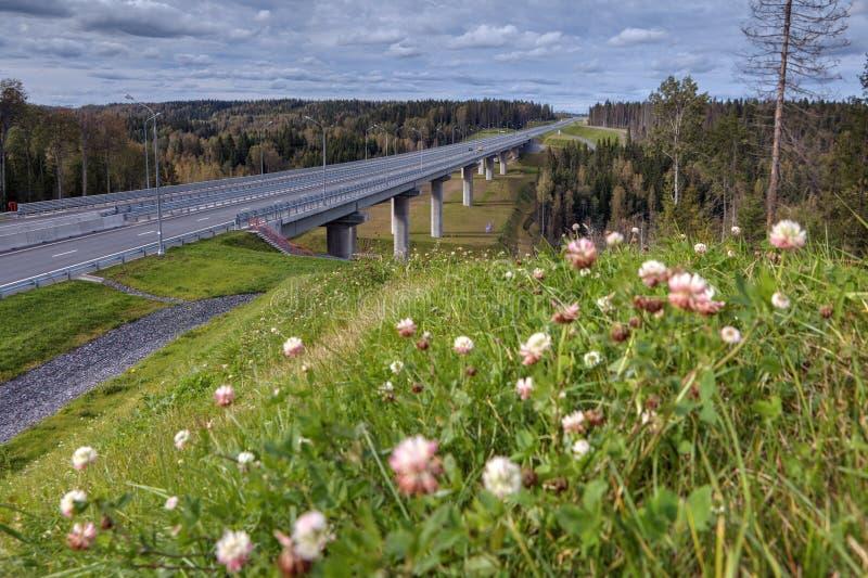 在穿过俄国森林的高速公路的高架桥桥梁, sunnyday 免版税库存图片