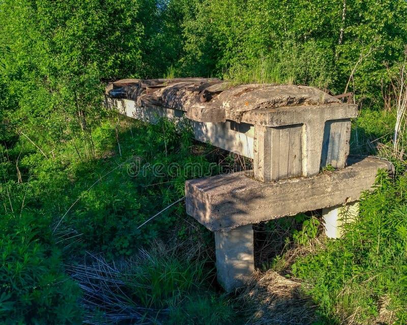 在穿过森林沼泽特写镜头的具体块的老未完成的被毁坏的narrow-gauge铁路 库存图片