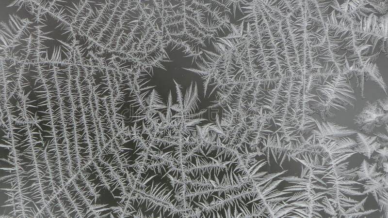 在窗口上的结霜的蜘蛛网 库存照片