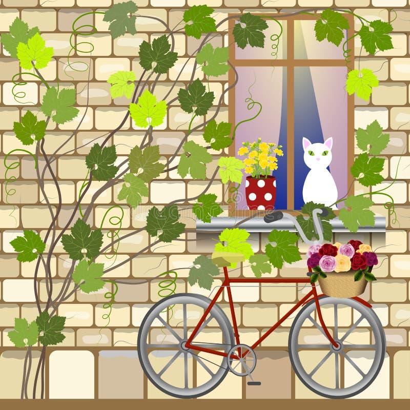 在窗口下的自行车 皇族释放例证