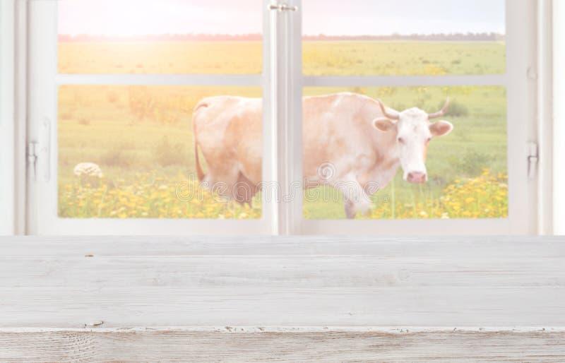 在窗口前面的木桌与草甸和母牛 免版税库存照片