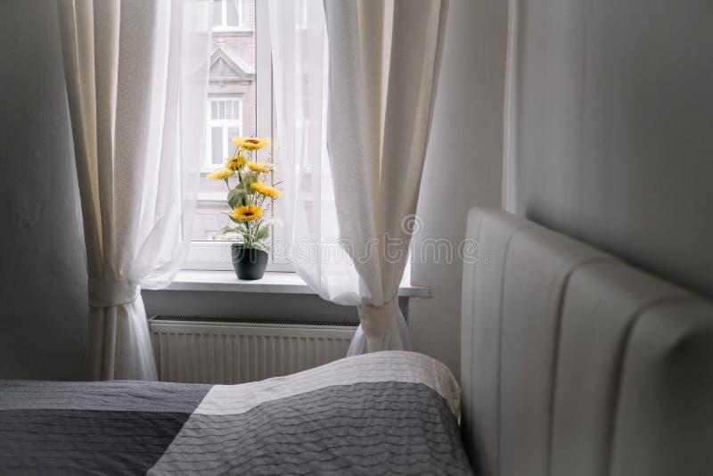 在窗台的向日葵 库存照片