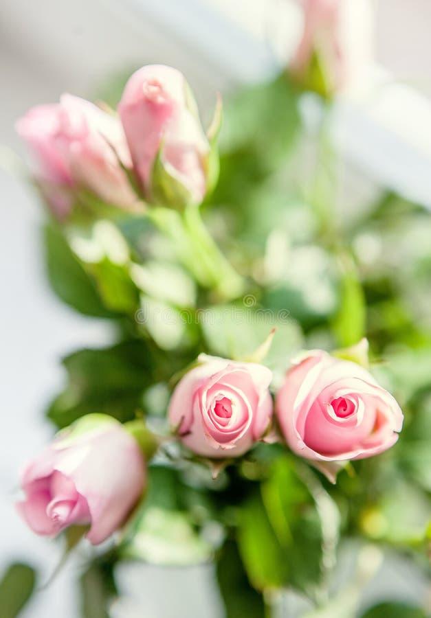 在窗台的小桃红色玫瑰花束在明亮的光 免版税图库摄影