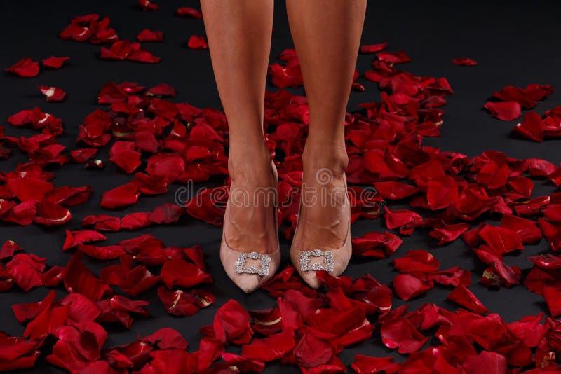 在站立在玫瑰的瓣的高跟鞋的苗条妇女` s腿 免版税图库摄影