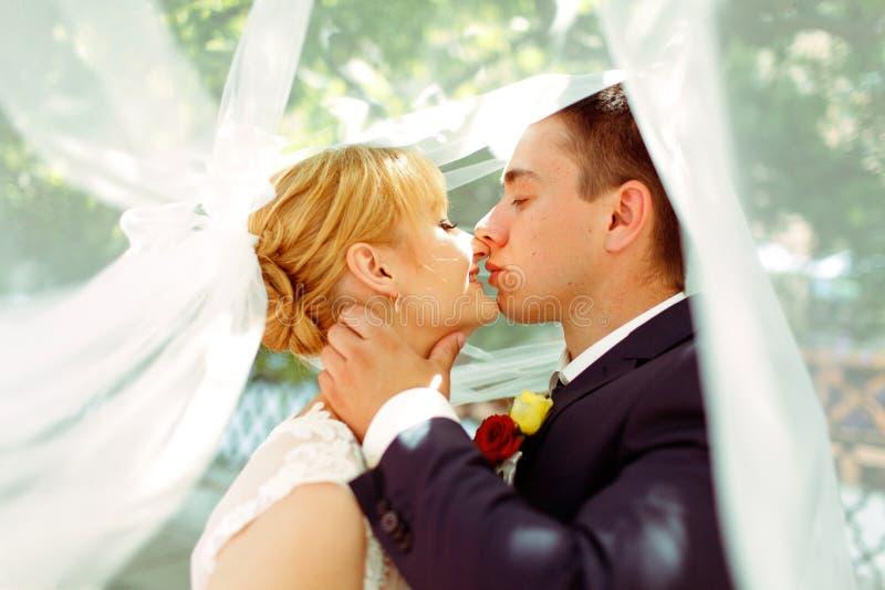 在站立在面纱下的新婚佳偶前亲吻的片刻  免版税图库摄影