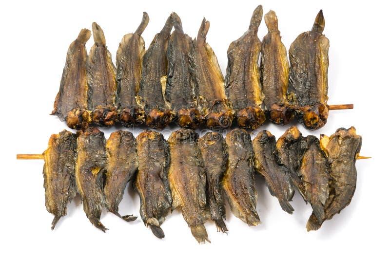 在竹串的干clarias鱼 免版税库存照片