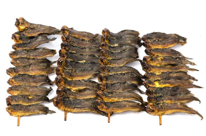 在竹串的干clarias鱼 图库摄影