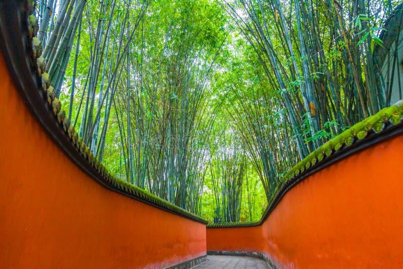 在竹子围拢的红色墙壁之间的段落,成都,瓷 库存照片