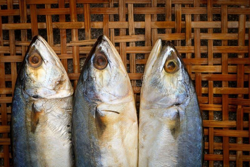 在竹柳条背景的盐味的鲭鱼 免版税图库摄影