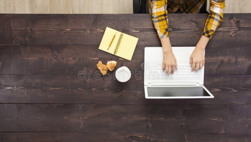 在笔记本的女实业家工作 免版税库存图片
