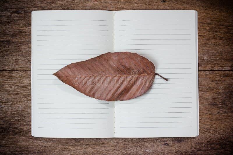 在笔记本的干燥叶子特写镜头 免版税库存照片