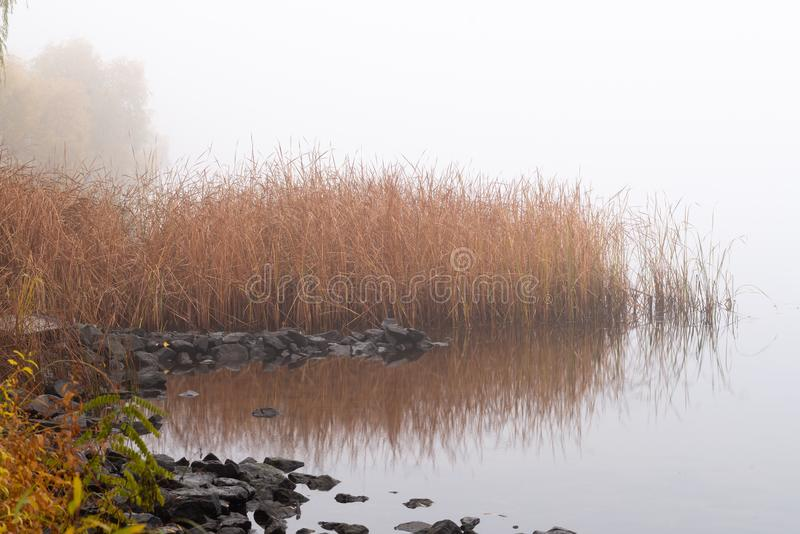 在第聂伯河的秋天薄雾,很快早晨,在基辅,乌克兰 免版税库存照片