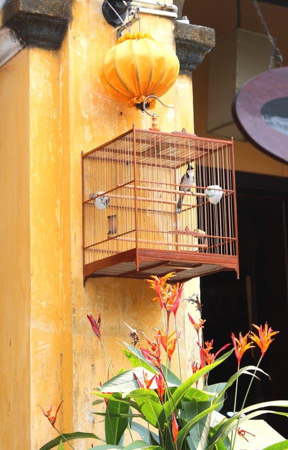 在笼子和一个丝绸灯笼,会安市,越南的歌手 库存照片