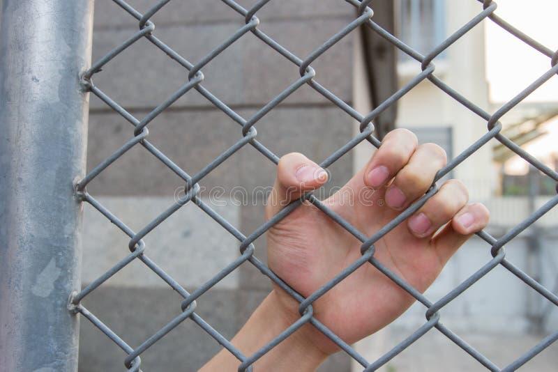 在笼子的手 图库摄影