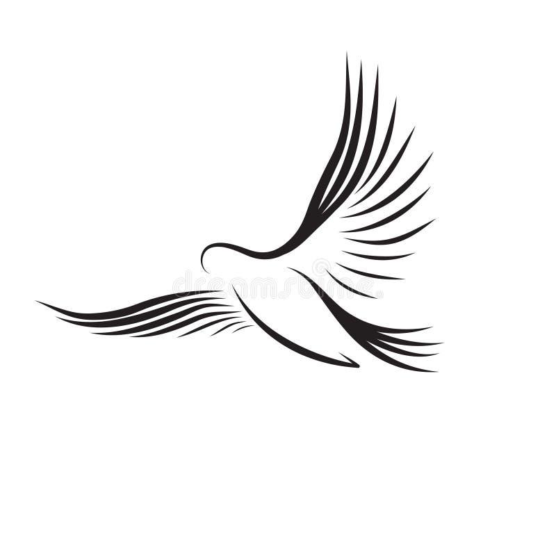在等高的飞鸟在白色背景.