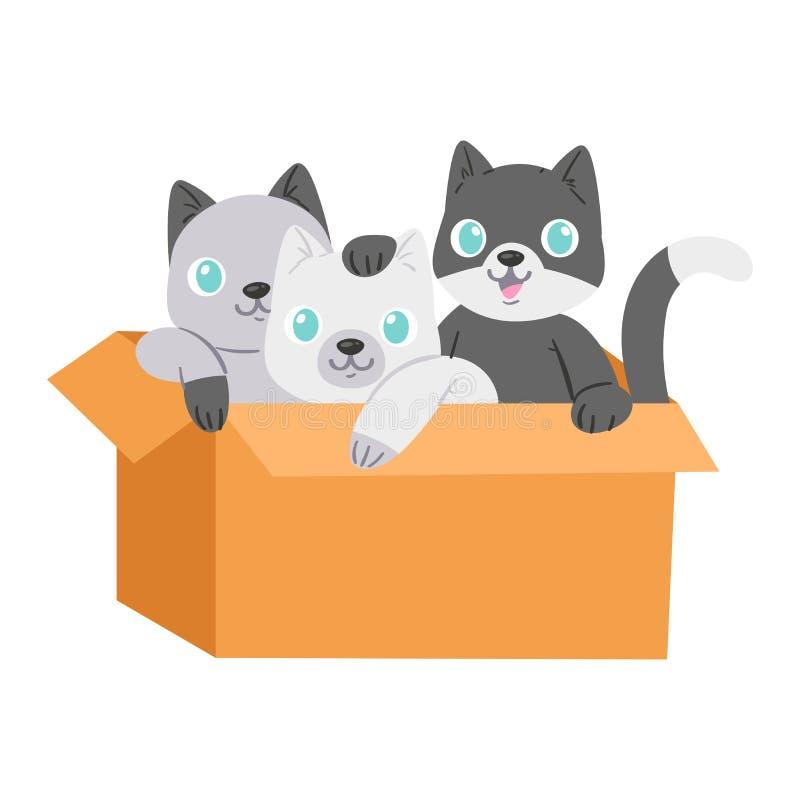 在箱子传染媒介全部赌注宠物字符家畜小猫的猫在hidding装箱的礼物例证似猫的套猫咪 库存例证
