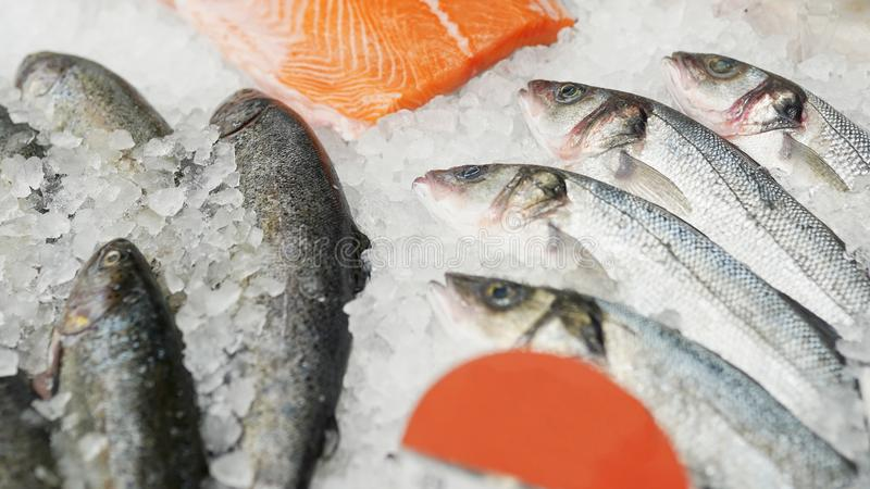 在箱子的冻鱼在超级市场或商店 免版税库存图片