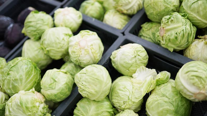 在箱子的嫩卷心菜在杂货店 新鲜的有机蔬菜 库存照片