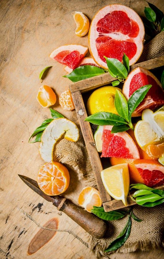 在箱子的柑橘-葡萄柚,桔子,蜜桔,柠檬,与一把老刀子的石灰 免版税图库摄影