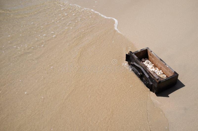 在箱子的海壳 免版税库存图片