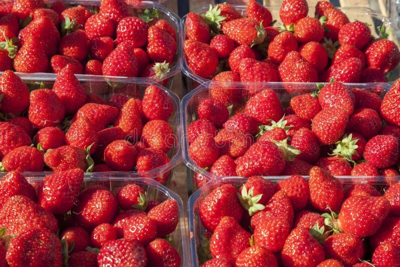 在箱子的草莓在市场上 免版税图库摄影