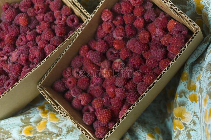 在箱子的莓 免版税库存照片