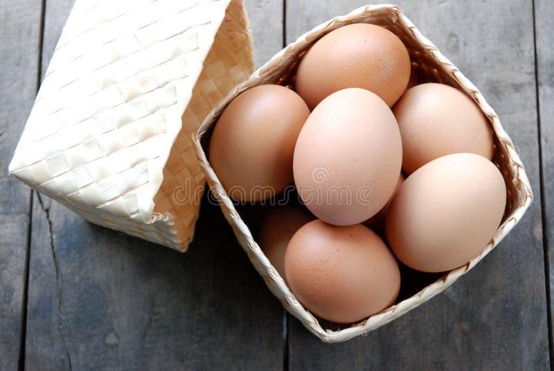 在箱子织法的鸡蛋 免版税库存照片