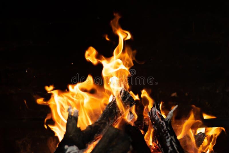 在篝火火炉的火火焰 图库摄影
